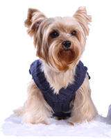 Dog knitted Pullover